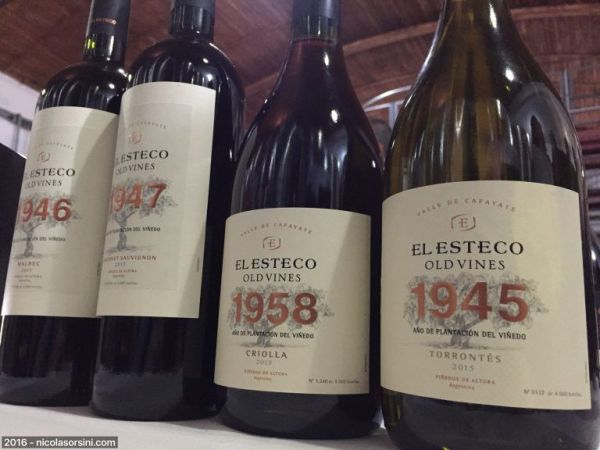 Old Vines El Esteco