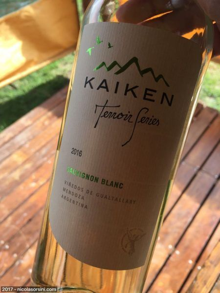 Kaiken Terroir Series Sauvignon Blanc 2016