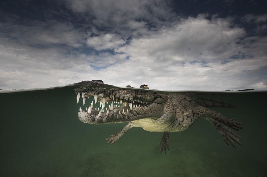 Entre Ciel et Mer, l'époustouflante série de photographies de Matty Smith