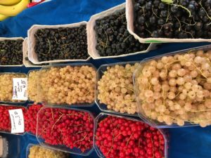 Red, white, and black currants