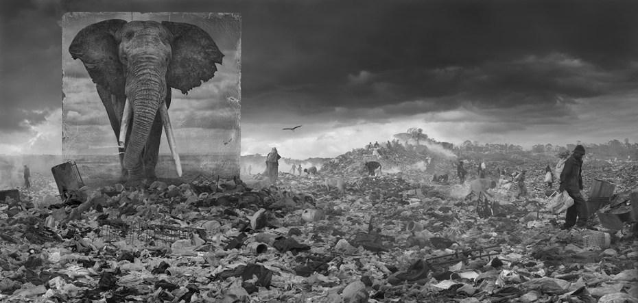 """Wasteland with Elephant"", 2015, © Nick Brandt, courtesy Atlas Gallery"