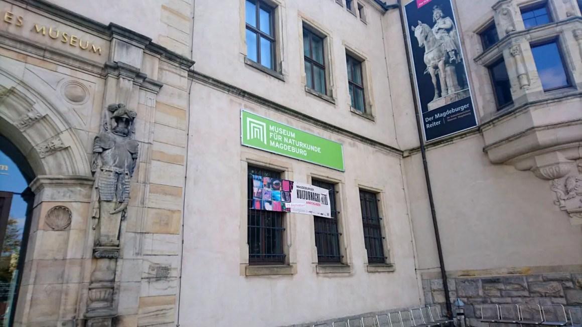 """sehenswuerdigkeiten-magdeburg-reisetipps-sachsen-anhalt-reisetipps-deutschland-museum-fuer-naturkunde"""" width=""""1422"""" height=""""800"""" data-wp-pid=""""6897"""" srcset=""""https://i1.wp.com/www.nicolos-reiseblog.de/wp-content/uploads/2018/01/sehenswuerdigkeiten-magdeburg-reisetipps-sachsen-anhalt-reisetipps-deutschland-museum-fuer-naturkunde.jpg?w=1160&ssl=1 1422w, https://www.nicolos-reiseblog.de/wp-content/uploads/2018/01/sehenswuerdigkeiten-magdeburg-reisetipps-sachsen-anhalt-reisetipps-deutschland-museum-fuer-naturkunde-300x169.jpg 300w, https://www.nicolos-reiseblog.de/wp-content/uploads/2018/01/sehenswuerdigkeiten-magdeburg-reisetipps-sachsen-anhalt-reisetipps-deutschland-museum-fuer-naturkunde-1024x576.jpg 1024w, https://www.nicolos-reiseblog.de/wp-content/uploads/2018/01/sehenswuerdigkeiten-magdeburg-reisetipps-sachsen-anhalt-reisetipps-deutschland-museum-fuer-naturkunde-800x450.jpg 800w"""" sizes=""""(max-width: 1422px) 100vw, 1422px""""/></p data-recalc-dims="""