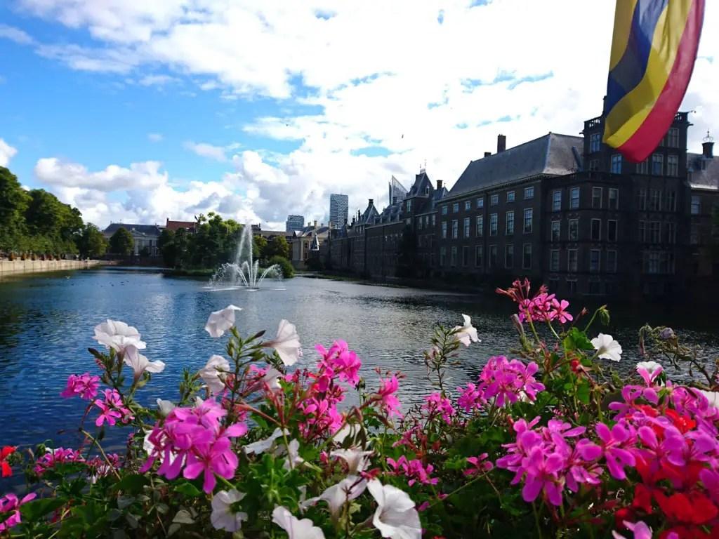 "what-must-have-seen-seen-in-the-hag-binnenhof-flowers ""width ="" 1024 ""height ="" 768 ""data-wp-pid ="" 8877 ""srcset ="" https: //www.nicolos- reiseblog.de/wp-content/uploads/2018/09/was-muss-man-in-den-haag-gesehen-haben-binnenhof-blumen.jpg 1024w, https://www.nicolos-reiseblog.de/wp -content / uploads / 2018/09 / wat-moet-hebben-gezien-in-de-haag-binnenhof-flowers-300x225.jpg 300w, https://www.nicolos-reiseblog.de/wp-content/ uploads / 2018/09 / what-must-have-you-in-the-hag-seen-binnenhof-flowers-800x600.jpg 800w, https://www.nicolos-reiseblog.de/wp-content/uploads/2018 /09/was-muss-man-in-he-haag-gesehen-haben-binnenhof-blumen-300x225@2x.jpg 600w ""sizes ="" (max-width: 1024px) 100vw, 1024px ""/></p data-recalc-dims="