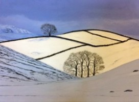 Gill Snowy Drublins