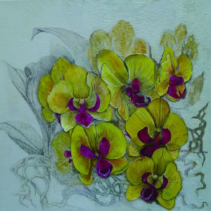 JTy orchids