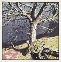 Old Oak - Nidderdale Way, Screenprint, Edition of 18 - Sarah Garforth