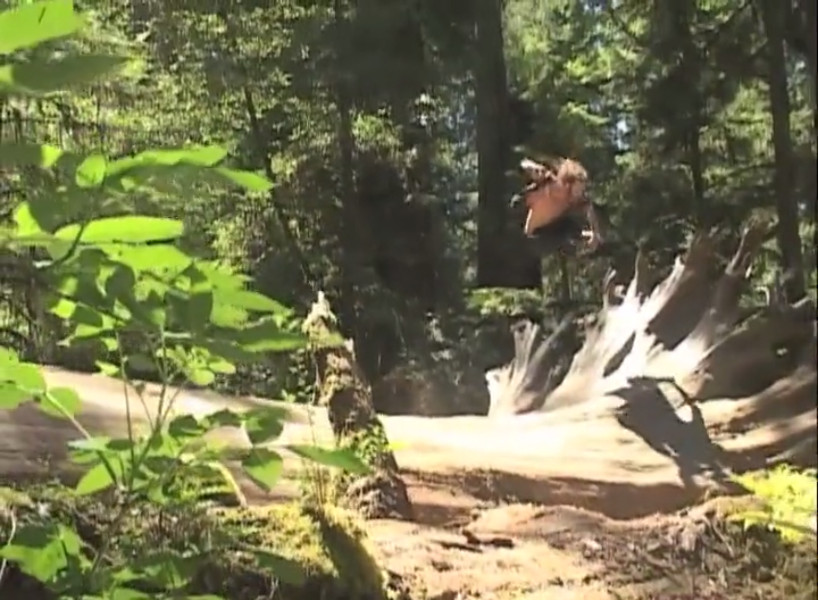 Chris Dafick - Mute Grab on the Tree