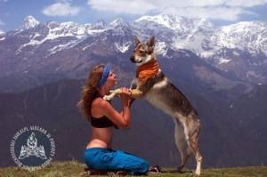 W Himalajach, fot. Przemek Bucharowski, źródło: www.3wilki.pl.
