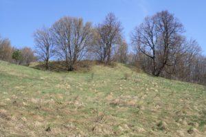 Na szczycie Góry Zamkowej Jaćwingowie zbudowali dwa pierścienie drewniano-ziemnych wałów obronnych. Fot. Hejpodlasie.blogspot.com