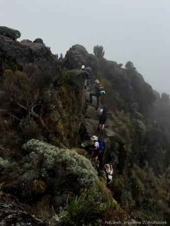 Kilimanjaro3_0008