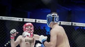 Browar północy fight night