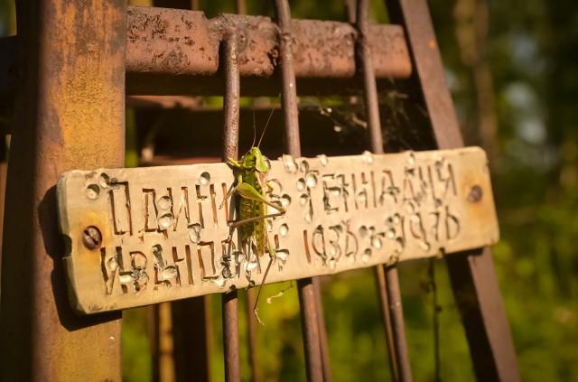 """Rusų kapai verti atskiro straipsnio. Dažniausia jie čia kukliai tariant """"neprižiūrėti"""""""