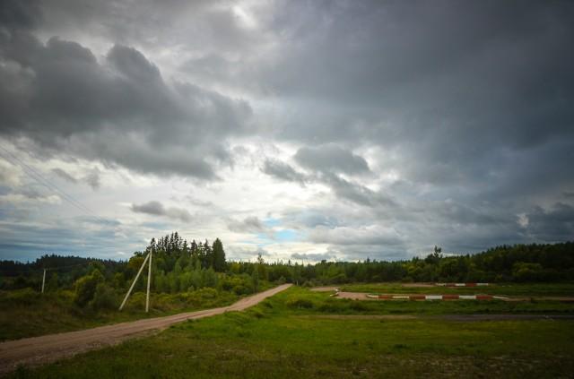 Kapinių miškelis - kairėje kelio pusėje