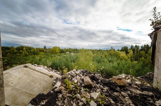 Miškų panorama iš penkto aukšto