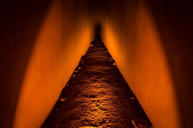 Tunelis šakojasi