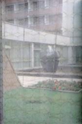Poilsio namų kiemelis