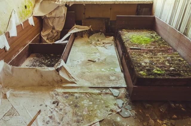 Pas klasioką ant lovos žolė auga...