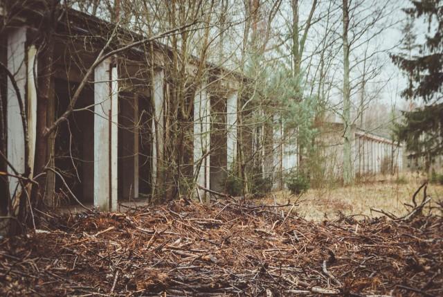 Miško pakraštyje - didžiuliai garažai (13, 14)