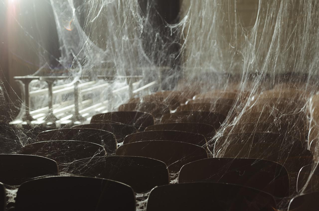 Maža kolektyvinė slėptuvė… vorams