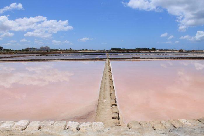 Saliny w Trapani, różowe saliny, Sól morska, baseny solne, kanały saliny, sale marino, sale di Trapani, sól z Trapani, saliny w Nubii, wydobywanie soli, żniwa solne, baseny solne, solniczki w Trapani, Trapani, Nubia, saliny w Nubii, Sycylia, Sicilia