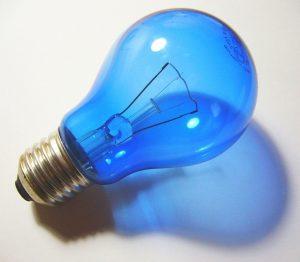 Blauw lichtpeertje. Copyright foto: Graham Soult