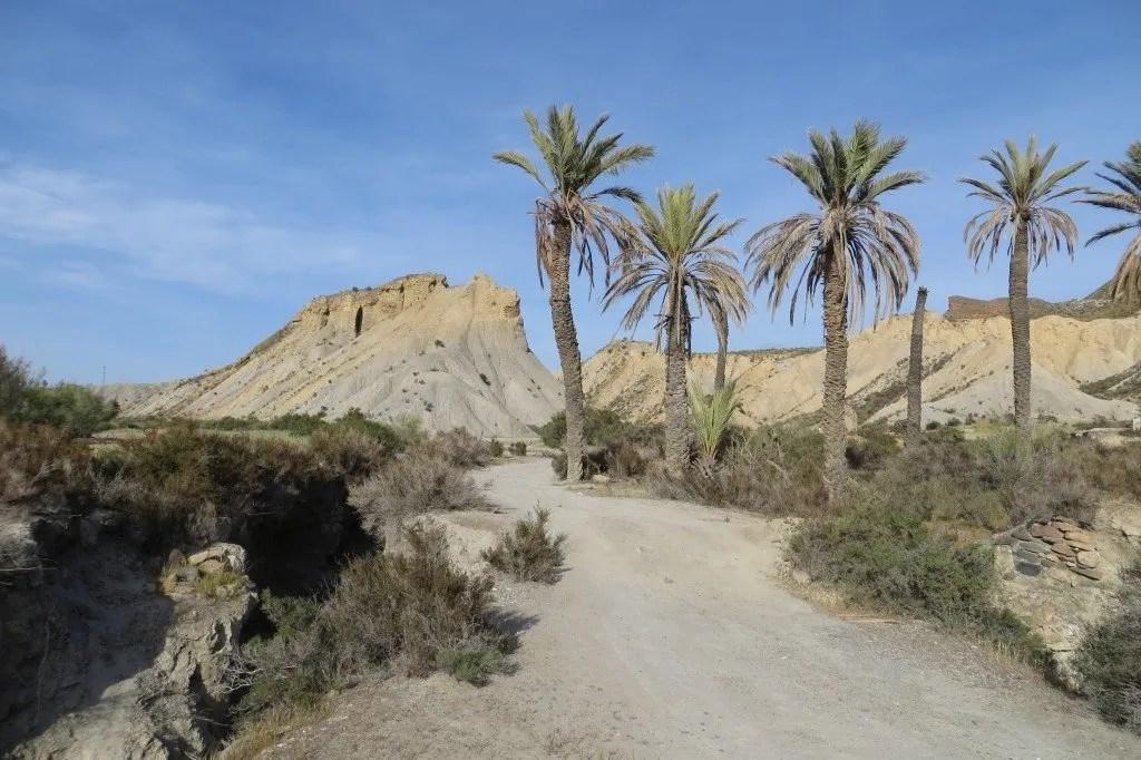 Tabernas woestijn