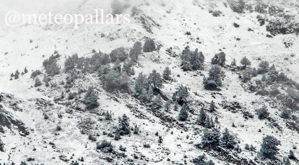 Las pistas catalanas del Pallars se han vestido de blanco