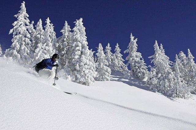 El director de Viajes Campulié disfruta con un paisaje totalmente teñido de blanco