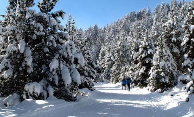 Las siete estaciones nórdicas del Pirineo de Lleida ofertan 170 Km para el esquí de fondo y 100 para las raquetas