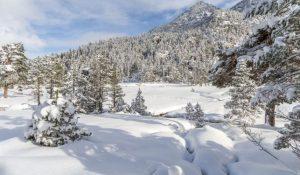 Las enormes nevadas recibidas en este sector pirenaico han dejado una estampa propia del invierno
