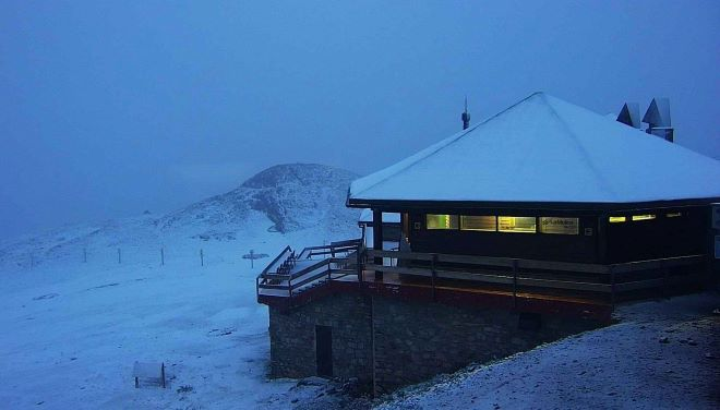 El Niu de l'Àliga en La Molina este lunes