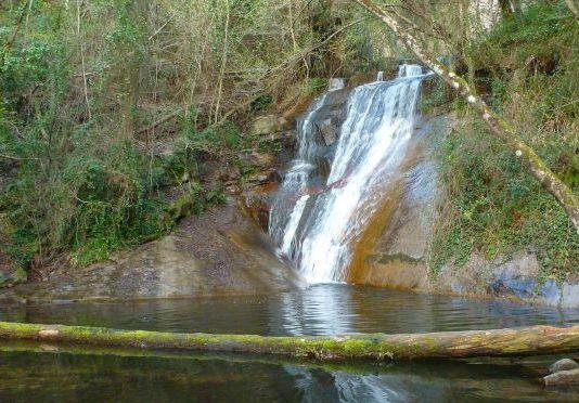 Una imagen del Gorg de la Goja, en el Montseny
