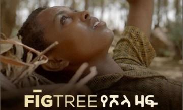 Fig Tree film poster art