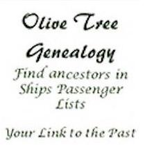The Olive Tree Genealogy