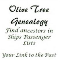 The Olive Tree Genealogy