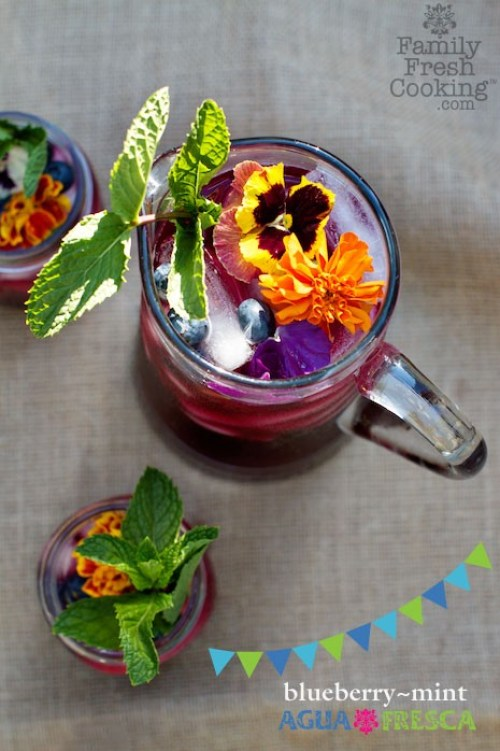 10 Refreshing Agua Fresca Recipes on {nifty thrifty things}
