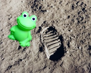 First Frog on the Moon