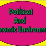 Political And Economic Environment