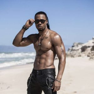 flavour-muscles