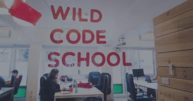 My First 6 Months at Wild Code School