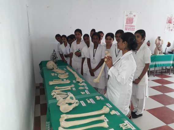 Pre Clinical Lab Trivandrum