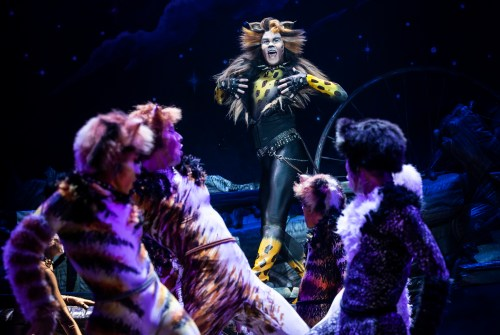 Live Theatre Review: CATS THE MUSICAL