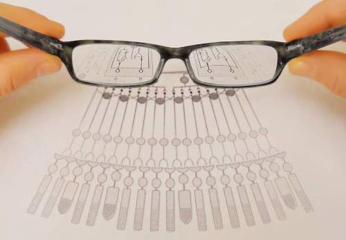Image of glasses magnifying a diagram.