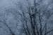 'Rainy Day through a Sunroof' by Emma Beatty Howells. 2nd place. Novice Digital.