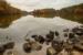 CO4~1~Advanced~Dale~Lewis~Lake_Needwood~33