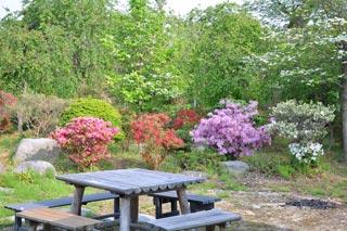大稲場グリーンパークの写真4