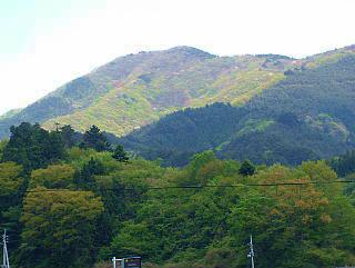 口太山の写真