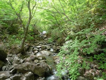 見返橋から遠くに紅葉滝を見た写真
