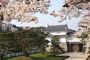県立霞ヶ城公園の画像
