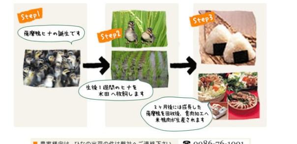 環境保全型農業の実践